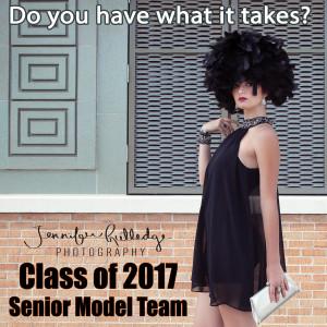 Sr Model Team_blog